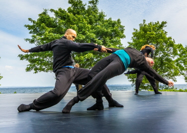 Dansk danseteater 1